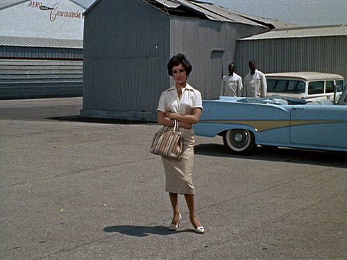 Elizabeth Taylor Cat on a Hot Tin Roof Skirt Blouse Striped Bag
