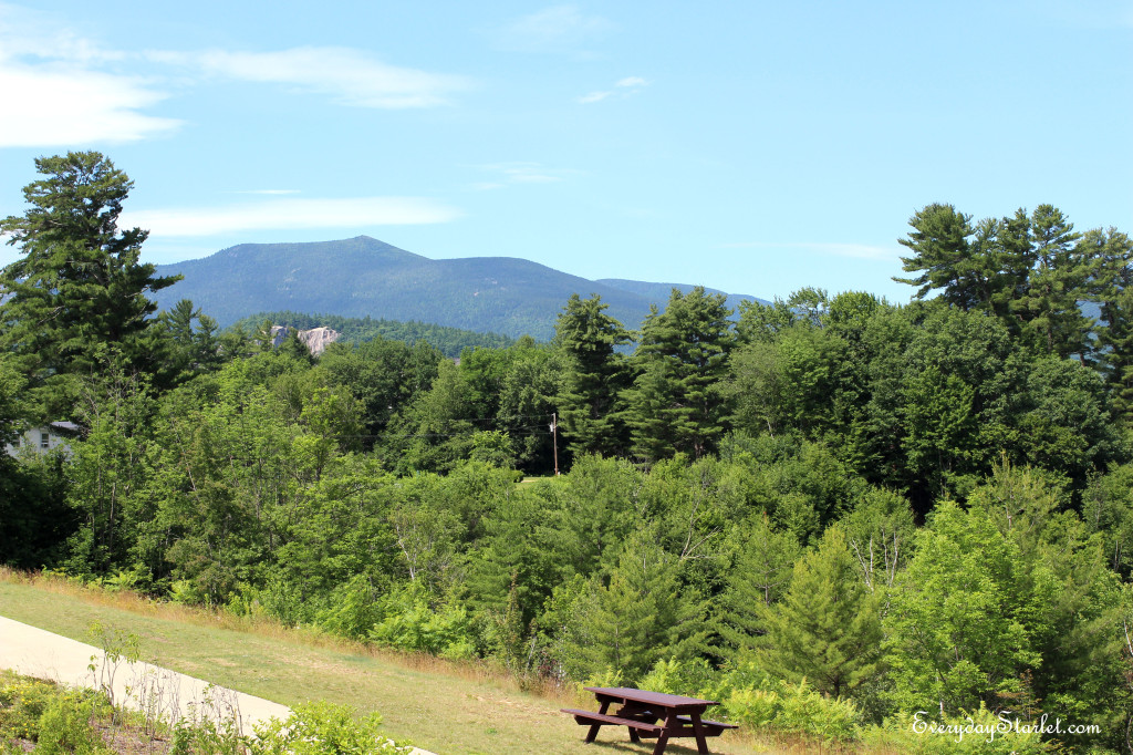 North Conway Picnic Table